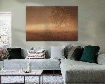 Baum im Nebel von YvePhotography