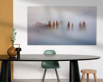 Nebel im Geul-Tal von Rob Boon