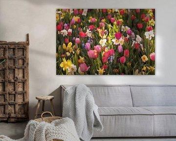 Frühlingsblumen im Morgenlicht von Karel Ham