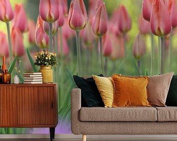 Tulpen in  een mooi  fris bos van Karel Ham