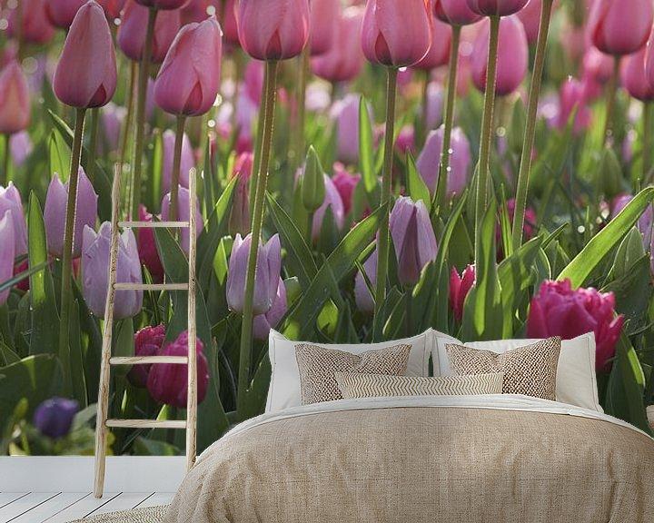 Sfeerimpressie behang: Voorjaarsbollen in mooi fris ochtendlicht van Karel Ham