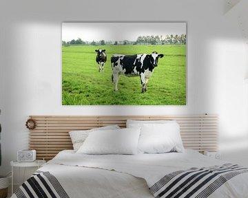 Twee koeien von Merijn van der Vliet