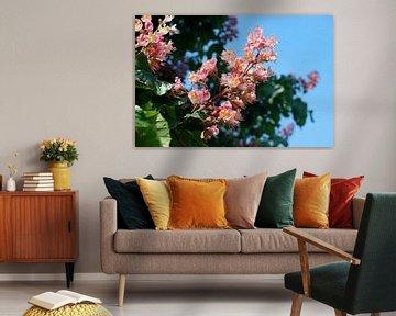 Blühende Rosskastanie von Yvonne Smits
