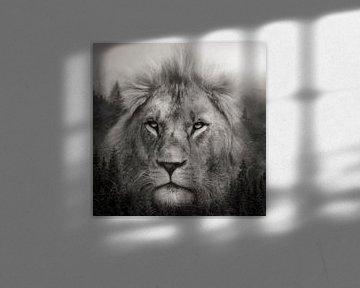 Doppelbelichtung mit einem Löwen von Bert Hooijer