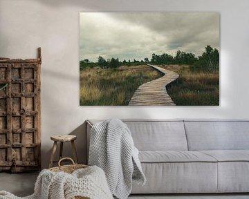 Pont-levis dans le Groote Peel