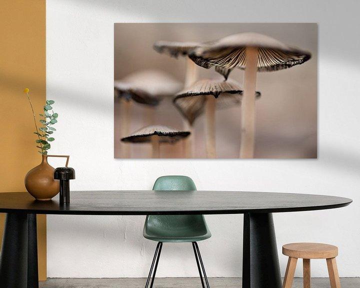 Sfeerimpressie: Paddestoelen van Detty Verbon