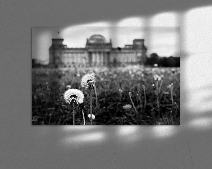 Beispiel: Pusteblumen vor dem Reichstagsgebäude von Frank Herrmann