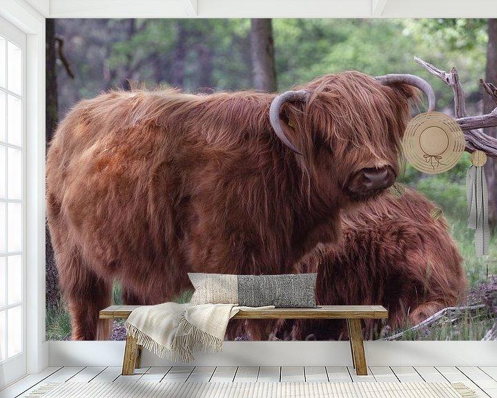 Sfeerimpressie behang: Schotse Hooglander van MDRN HOME