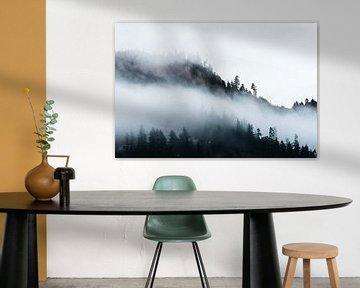 Foggy Pacific Northwest Treescape, Nature Magick  von PI Creative Art