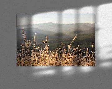 Berg-und-Fall-Felder, Nature Magick  von PI Creative Art