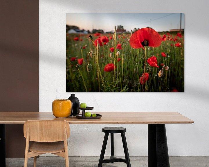 Sfeerimpressie: Poppies in Mechelen van Jim De Sitter