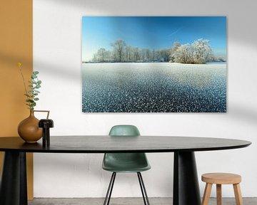 Bevroren meer met berijpte bomen van Merijn van der Vliet
