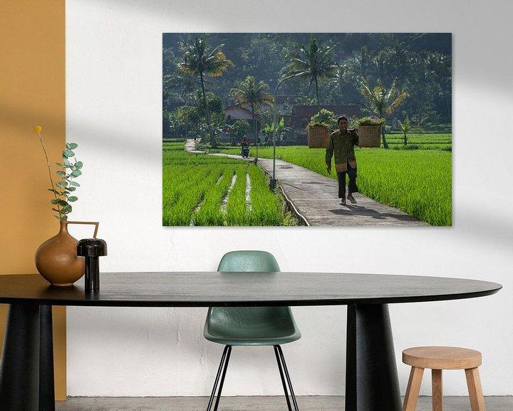 Beispiel: Straße durch die Reisfelder von Anges van der Logt
