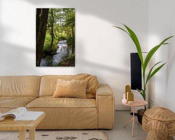 Bos in de Ardennen van Joyce Schouten