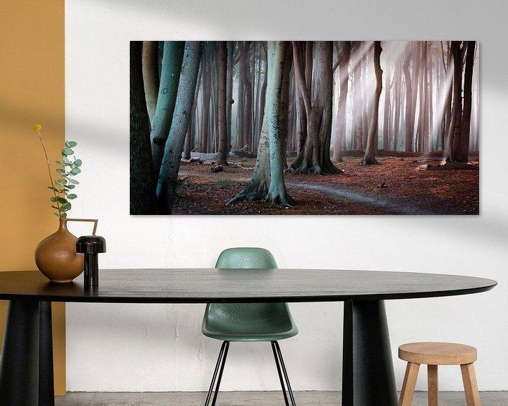 Beispiel: Wald an der Ostsee von Martin Wasilewski