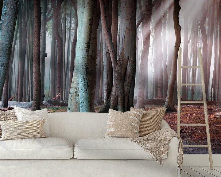 Beispiel fototapete: Wald an der Ostsee von Martin Wasilewski