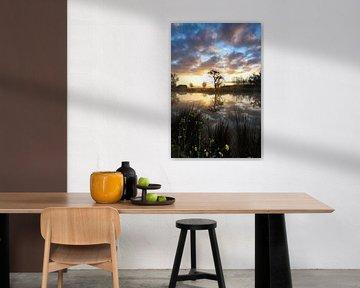 Spiegelung bei Sonnenaufgang in Utrecht von Marieke Smetsers