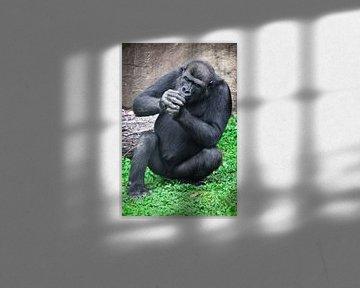 Ein Gorilla-Affe sitzt mit gefalteten Händen im Gras, als ob sie etwas raucht, verbotenes Bild