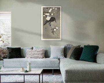 Corbeau avec des fleurs de cerisier, Ohara Koson, 1900 - 1930