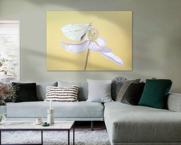 Impression: Papillon sur une fleur sur natascha verbij