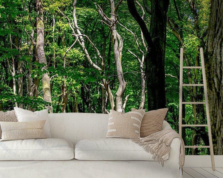 Sfeerimpressie behang: Een zeer gave dode boom in een bos van Thomas Winters