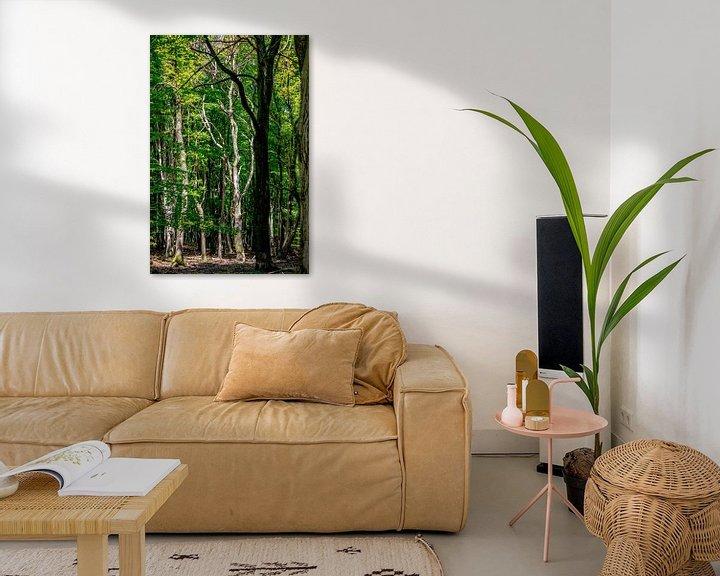 Sfeerimpressie: Een zeer gave dode boom in een bos van Thomas Winters