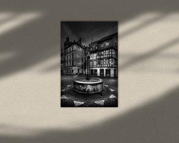 Kirschgarten Mainz von Jens Korte