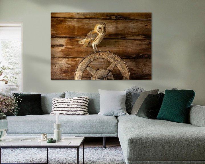 Beispiel: Schleiereule, Tyto alba von Gert Hilbink