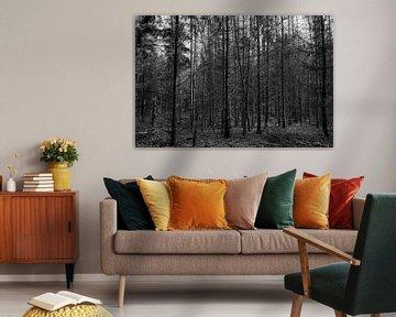 Ein schwarzer und weißer Wald von JM de Jong-Jansen