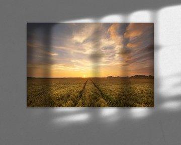 Zonsondergang bij Westeremden van Ron Buist
