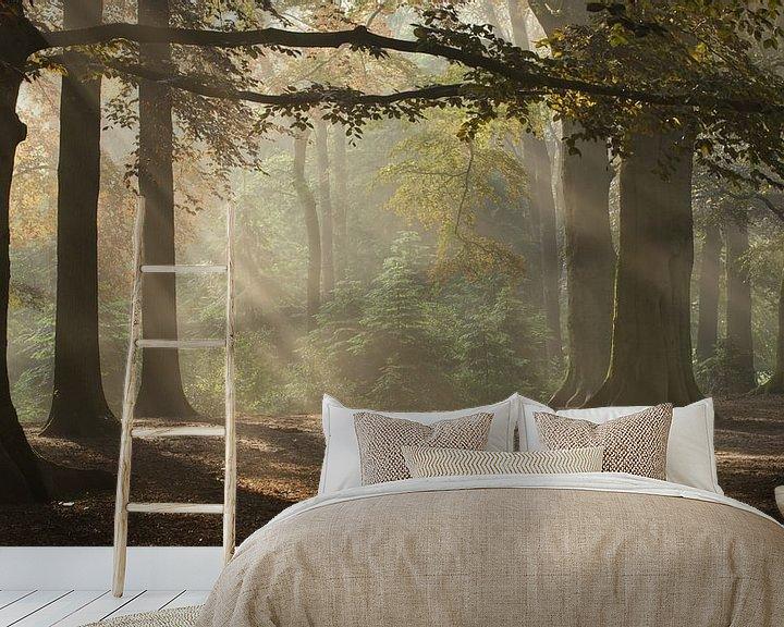 Sfeerimpressie behang: Magic Woodland (2) van Art Wittingen