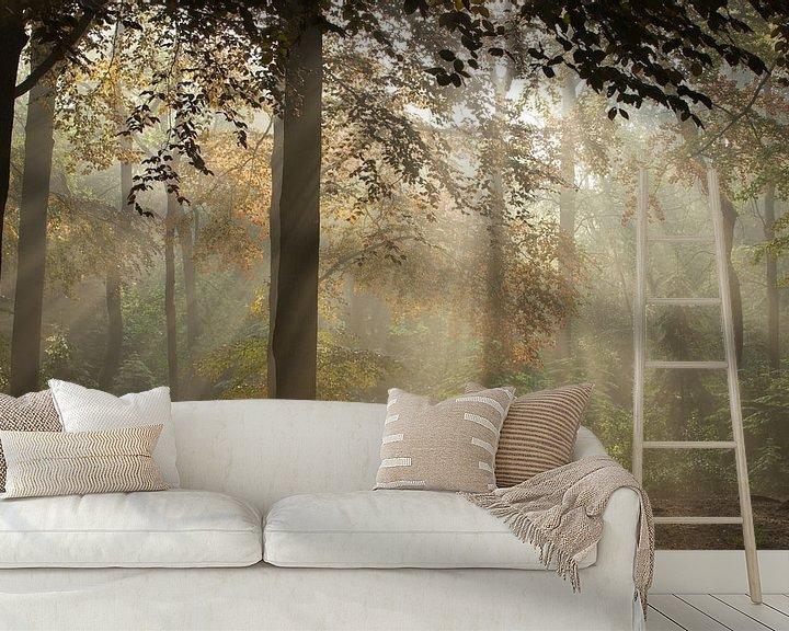 Sfeerimpressie behang: Magic Woodland (3) van Art Wittingen