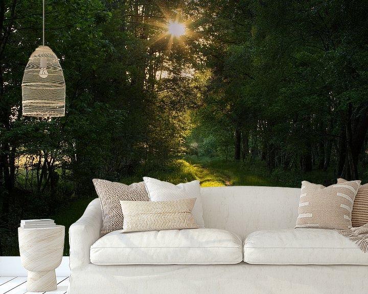 Sfeerimpressie behang: Sunset Forest van Art Wittingen