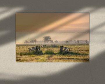 Ländliches Bild in der Alblasserwaard von Leon Okkenburg