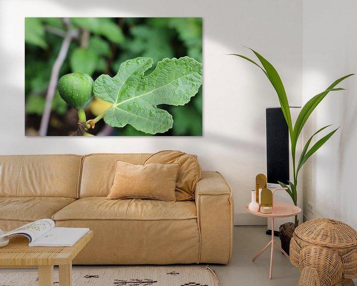 Sfeerimpressie: Vijg met mooi blad van Rosalie Broerze