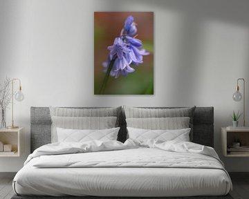 Blaue Waldhyazinthe von Marga Vroom
