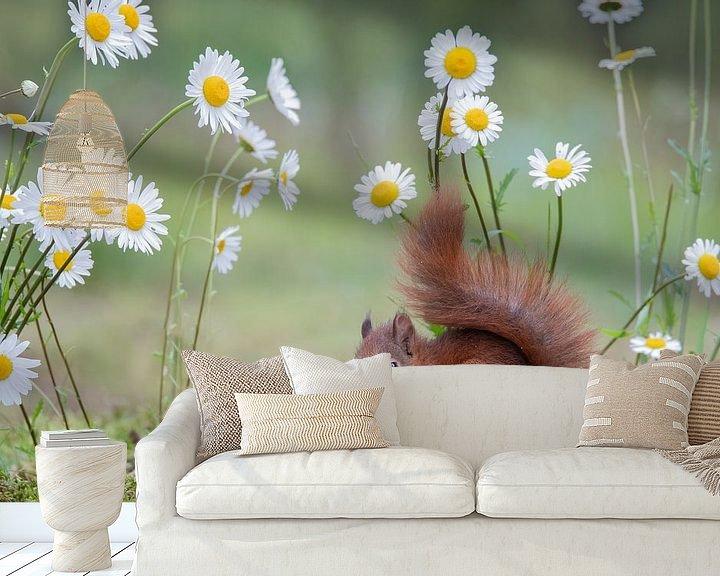 Sfeerimpressie behang: jong eekhoorntje tussen de margrieten van Ina Hendriks-Schaafsma