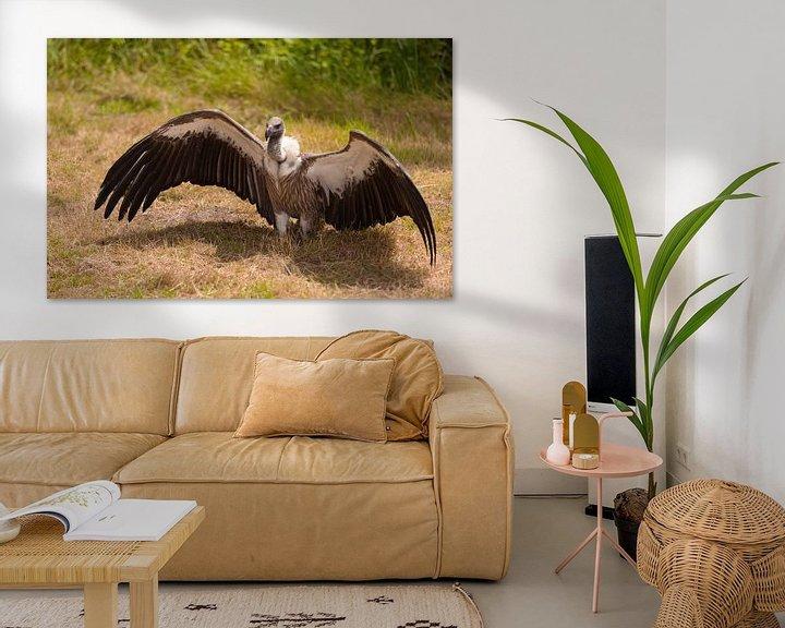 Sfeerimpressie: Gier met vleugels wijd van Brian Morgan
