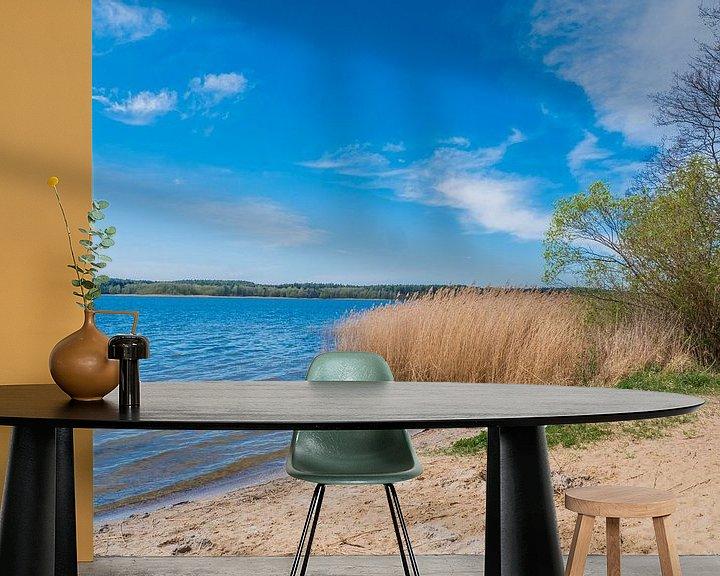 Beispiel fototapete: See an der Mecklenburgische Seenplatte von Animaflora PicsStock