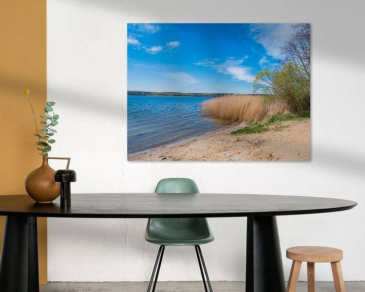 Beispiel: See an der Mecklenburgische Seenplatte von Animaflora PicsStock