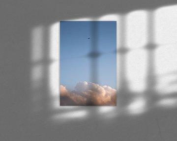 Vogel und Wolke von Joost de Groot