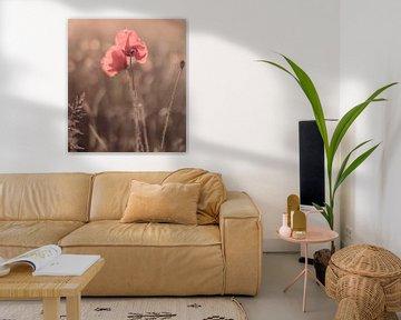 Blumen Teil 132 von Tania Perneel