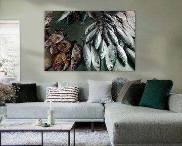 Fische Thailand von Pünktchenpünktchen Kommastrich