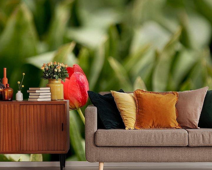Beispiel fototapete: Tulpen mit grünen Blättern auf dem Feld   Naturfoto   Botanisches Design von Karijn   Fine art Natuur en Reis Fotografie