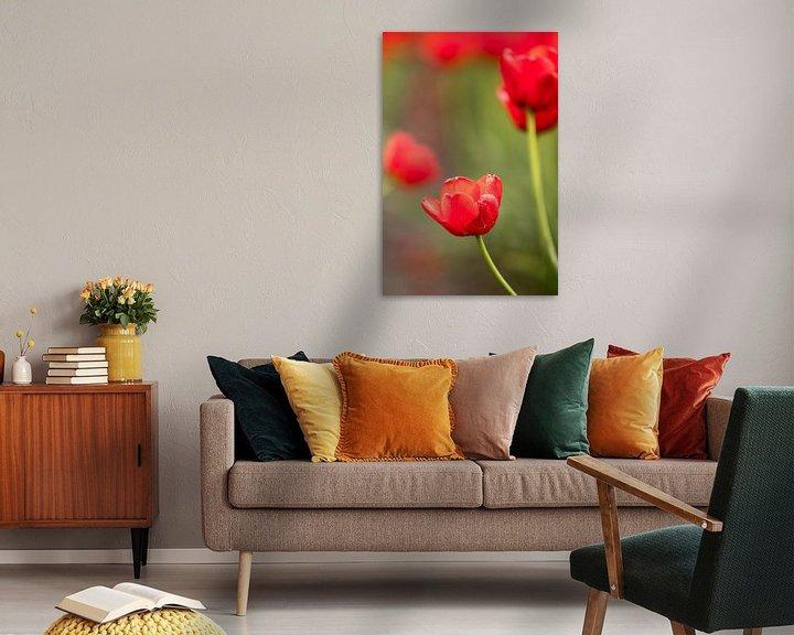 Beispiel: ein Foto einer roten Tulpe   botanisches Design Foto von Karijn   Fine art Natuur en Reis Fotografie