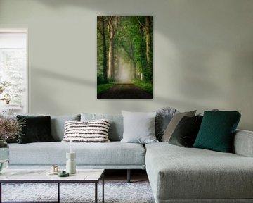Dreamy road van Patrick Rodink