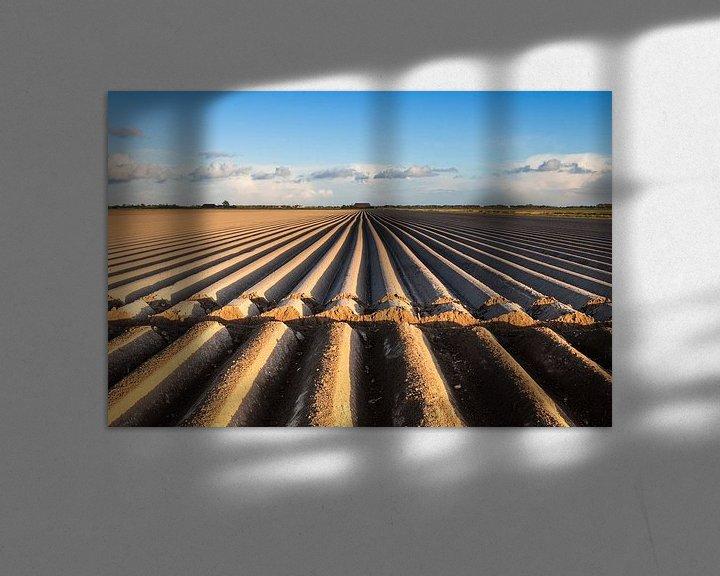 Sfeerimpressie: Dutch acres / Akkerland van Ton Drijfhamer