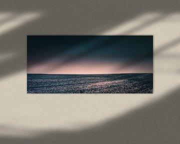 Horizon foto van een veld in de zomer in de felle zon - Windows XP - Polen in de zomer van Jakob Baranowski - Off World Jack