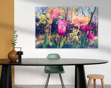 Blossom Gruga - Frühlings Tulpen Tulip in sanftem Bokeh fotografiert von Jakob Baranowski - Off World Jack