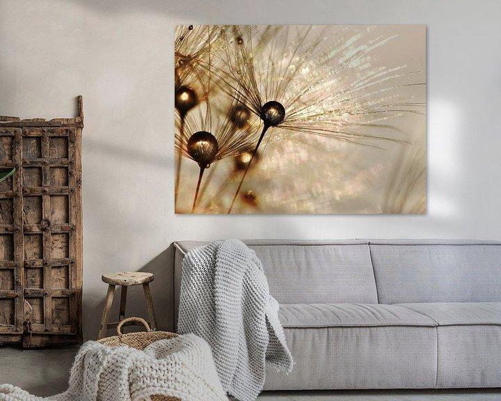 Sfeerimpressie: Paardenbloem gouden druppels van Julia Delgado